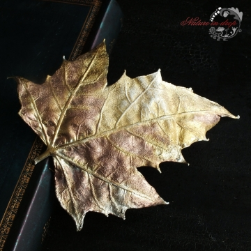 Gilded maple leaf - brooch