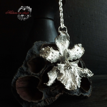 Silver-plated orchid - pendant