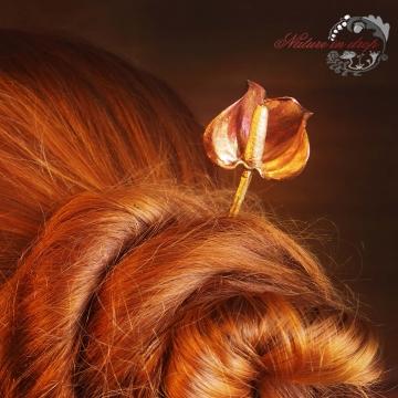 Jehlice z květu Kaly