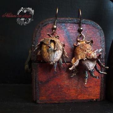 Plated Hazelnuts - earrings